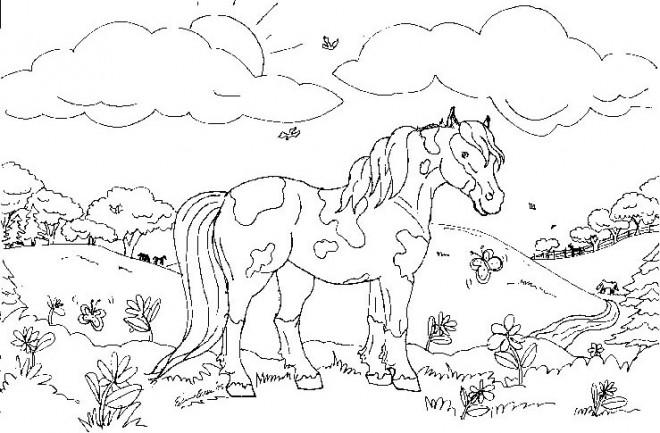 Coloriage et dessins gratuits Animaux  Mignon facile à imprimer