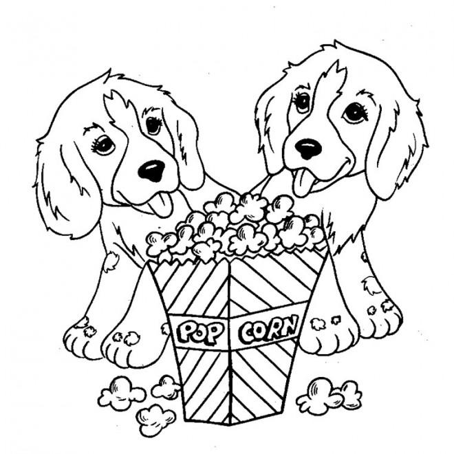 Coloriage des chiens trop mignons et le pop corn dessin gratuit imprimer - Coloriage de chiot a imprimer ...