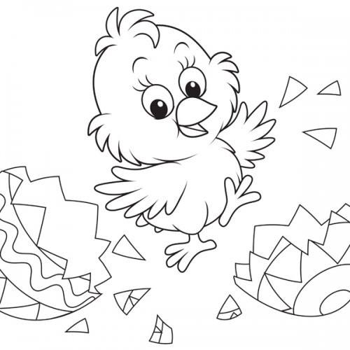 Coloriage et dessins gratuits Poussin Trop Mignon en Ligne à imprimer
