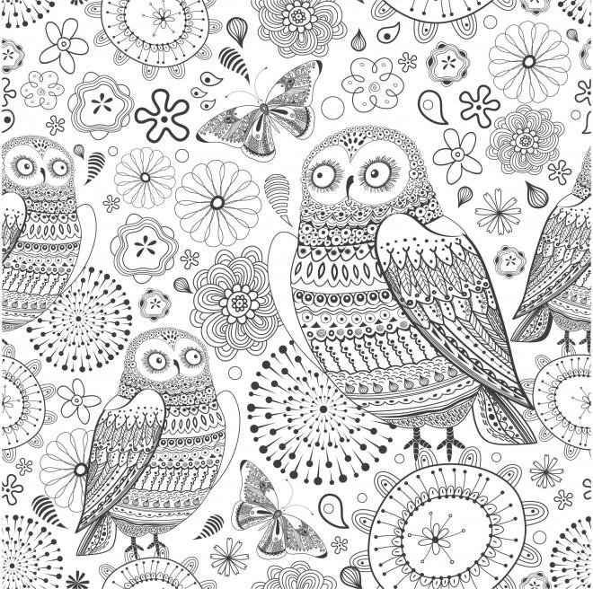 Coloriage et dessins gratuits Adulte Hibou en couleur à imprimer