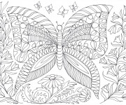 Coloriage Anti-Stress Papillons
