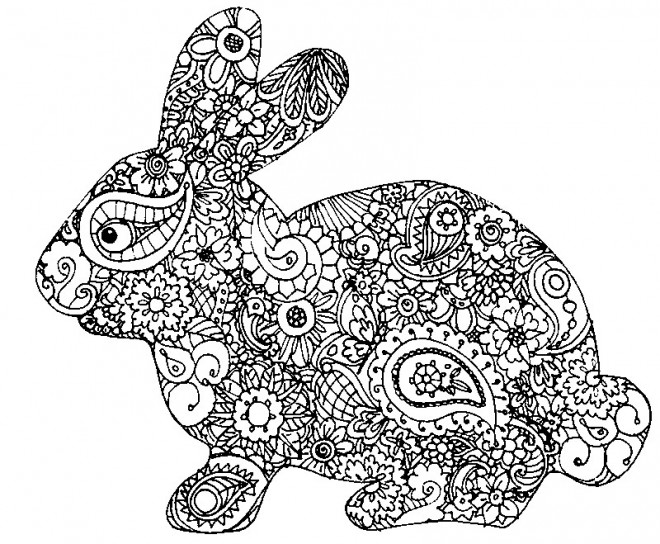 Coloriage mandala adulte animaux dessin gratuit imprimer - Chat a colorier adulte ...