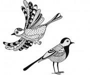 Coloriage Oiseaux Zen Facile