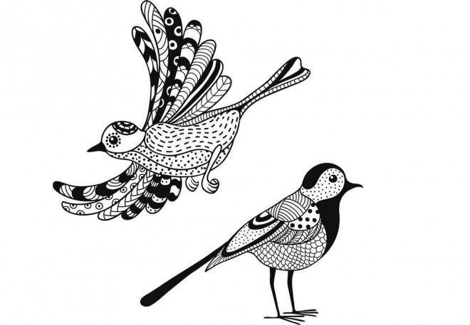 Coloriage Facile Oiseau.Coloriage Oiseaux Zen Facile Dessin Gratuit A Imprimer