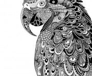 Coloriage Zen Animaux Perroquet