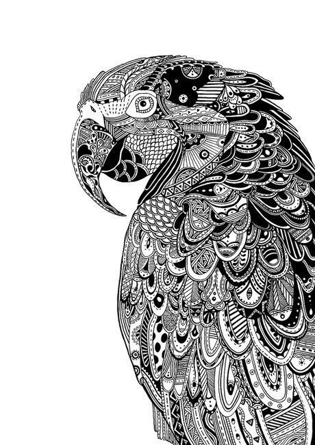 Coloriage et dessins gratuits Zen Animaux Perroquet à imprimer