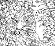 Coloriage et dessins gratuit Zen Anti-Stress Panthère à imprimer