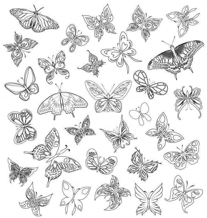 Coloriage et dessins gratuits Zen Papillons Magnifiques à imprimer