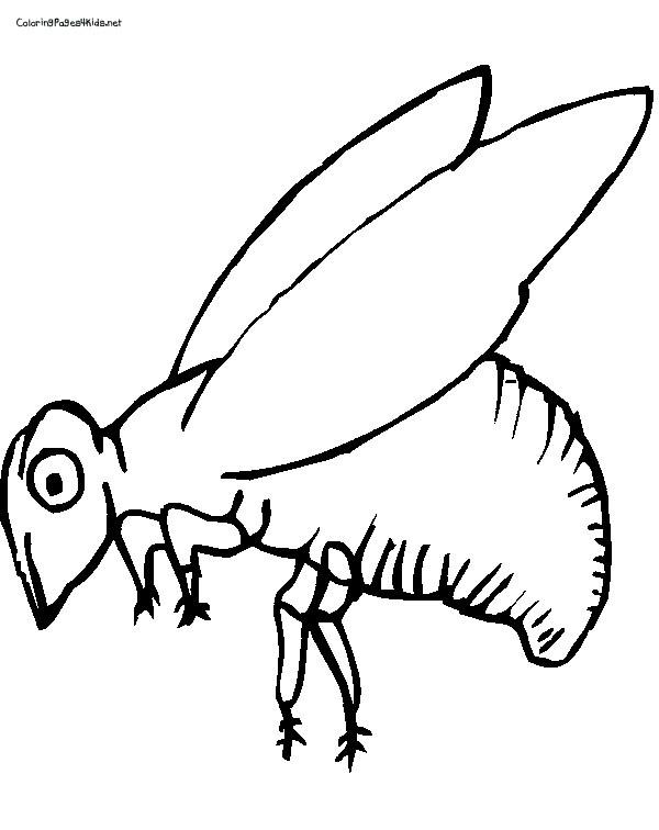 Coloriage et dessins gratuits Abeille Insecte à imprimer