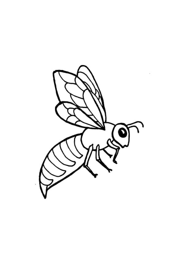 Coloriage et dessins gratuits Abeille qui ouvre ses ailes à imprimer