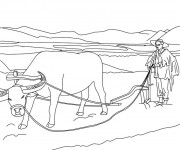 Coloriage dessin  Agriculture 14