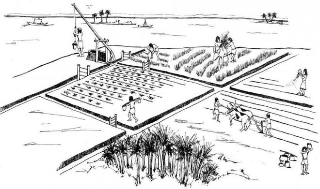 Coloriage et dessins gratuits Agriculture en Chine à imprimer