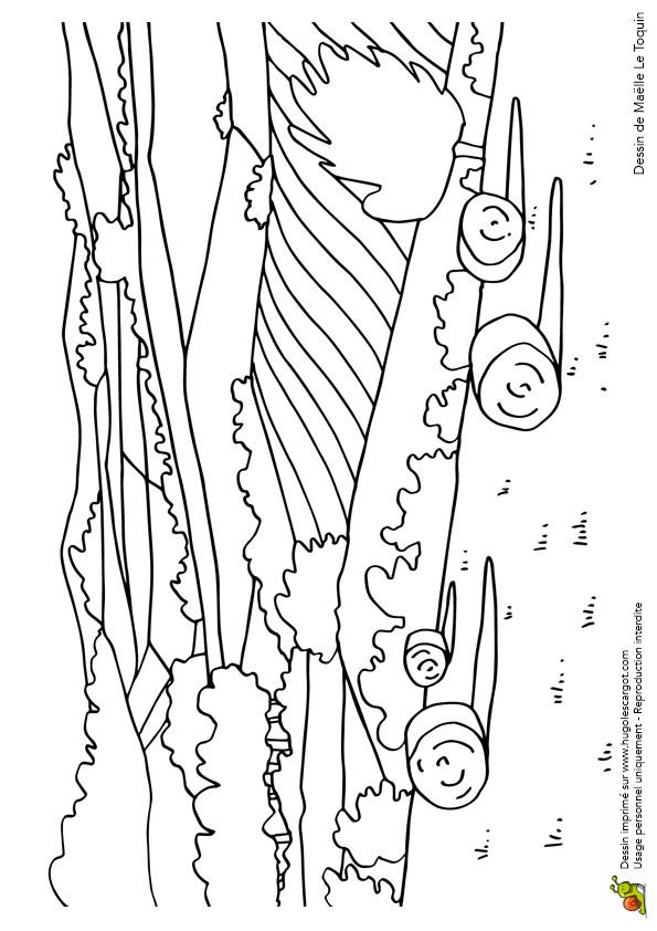 Coloriage et dessins gratuits Champs Agricole à imprimer