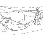 Coloriage et dessins gratuit Fermier Chinois à imprimer