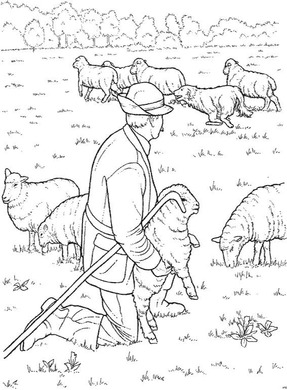 Coloriage et dessins gratuits Fermier et ses moutons à imprimer