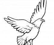 Coloriage dessin  Aigle 1