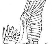 Coloriage dessin  Aigle 10