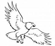 Coloriage dessin  Aigle 18