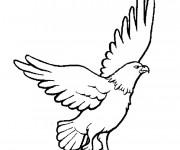 Coloriage et dessins gratuit Aigle couleur à imprimer