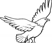 Coloriage et dessins gratuit Aigle en noir et blanc à imprimer
