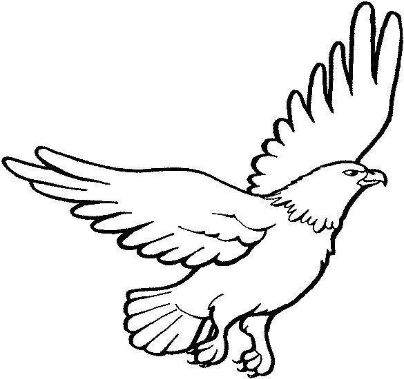 Coloriage et dessins gratuits Aigle en noir et blanc à imprimer