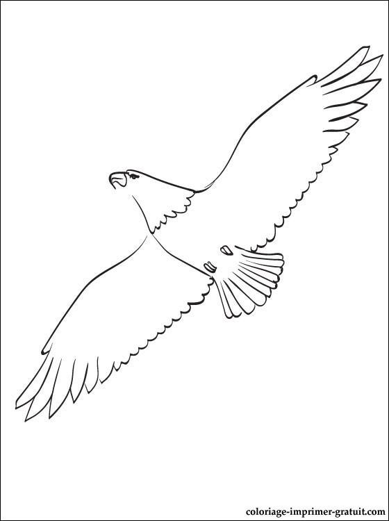 Coloriage et dessins gratuits Aigle en plein air à imprimer