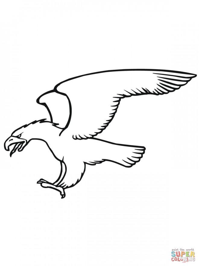 Coloriage et dessins gratuits Aigle fait sortir la tongue à imprimer