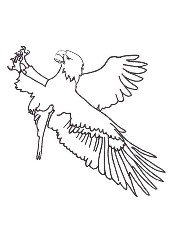 Coloriage et dessins gratuits Aigle maternelle à imprimer