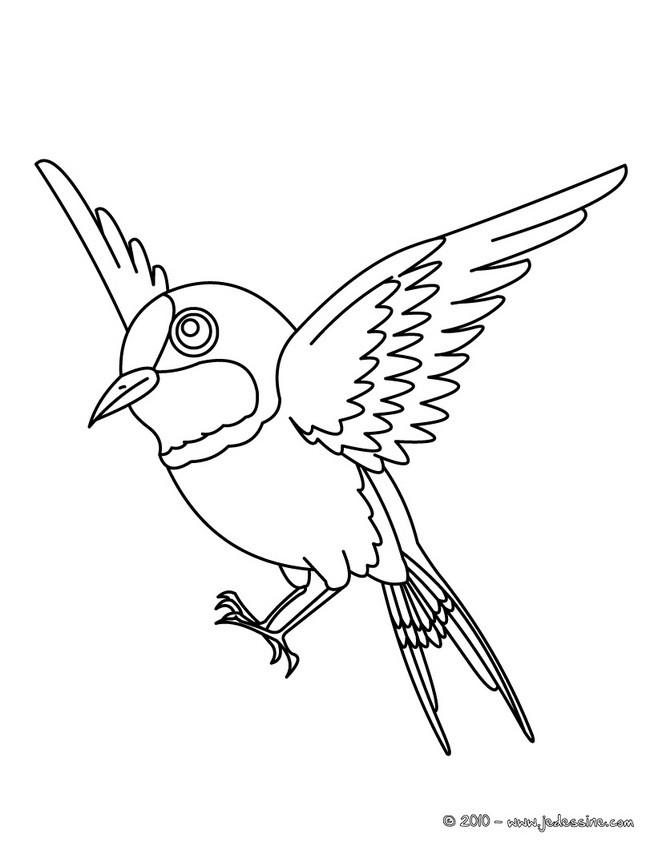 Coloriage et dessins gratuits Aigle oiseau à imprimer