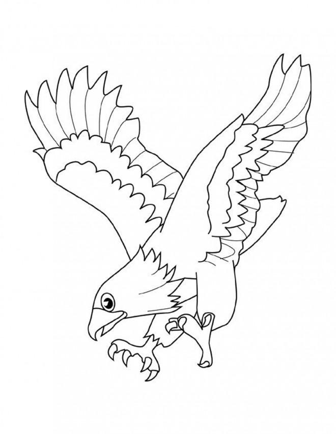 Coloriage et dessins gratuits Aigle qui ouvre ses ailes à imprimer