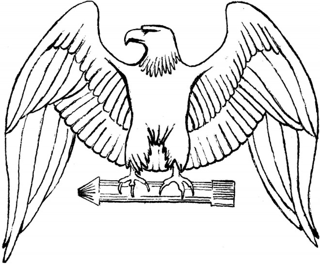 Coloriage et dessins gratuits Aigle royal à imprimer
