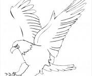 Coloriage et dessins gratuit Aigle se prépare pour attaquer à imprimer