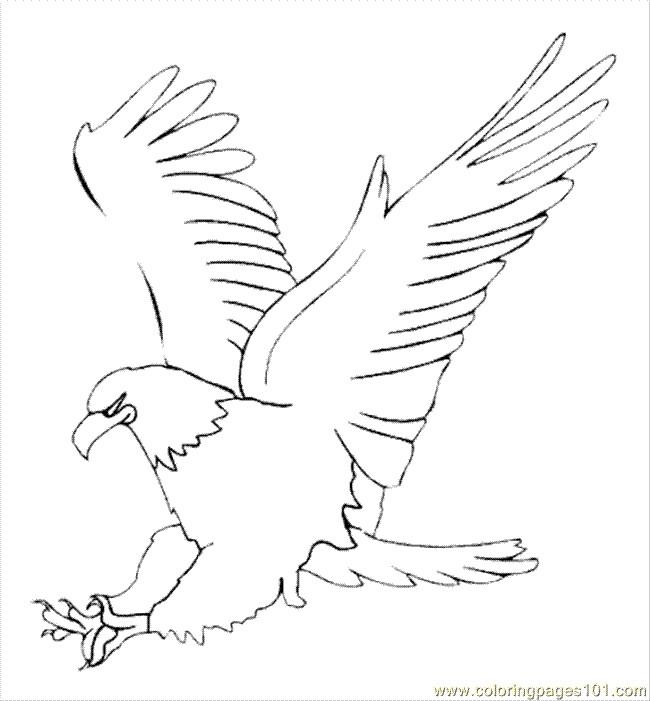 Coloriage et dessins gratuits Aigle se prépare pour attaquer à imprimer