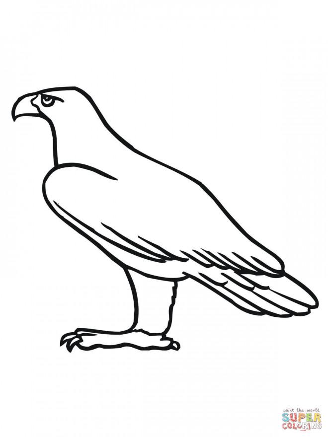 Coloriage et dessins gratuits Aigle simple à imprimer