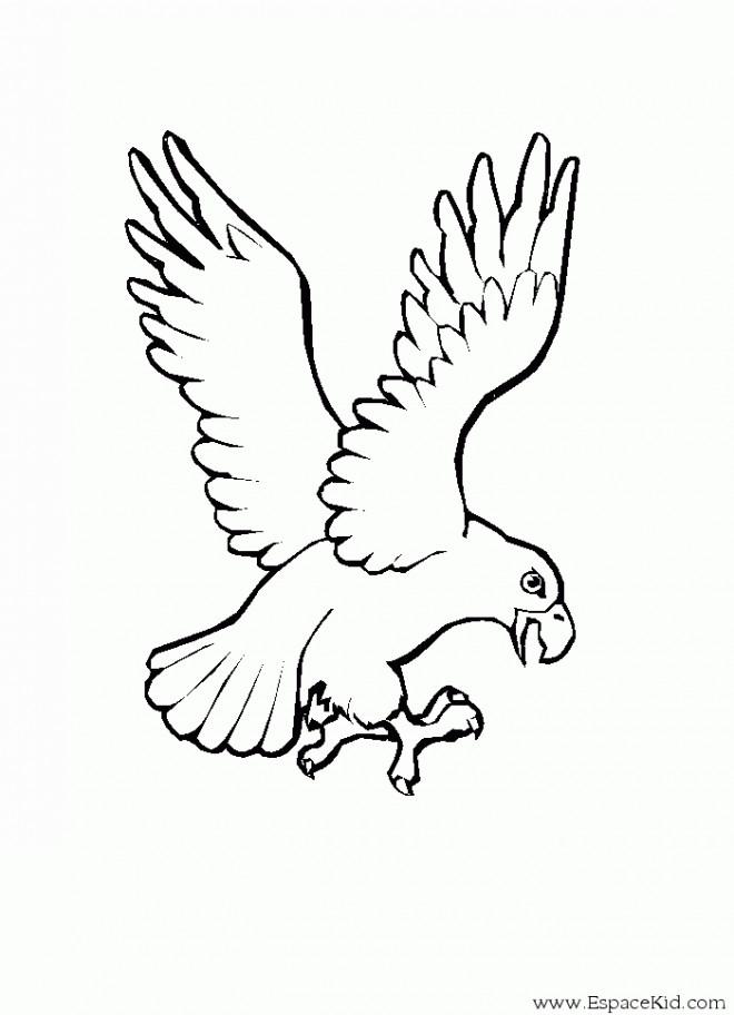 Coloriage et dessins gratuits Aigle stylisé à imprimer
