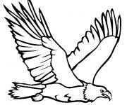 Coloriage et dessins gratuit Un Aigle royal au chasse à imprimer