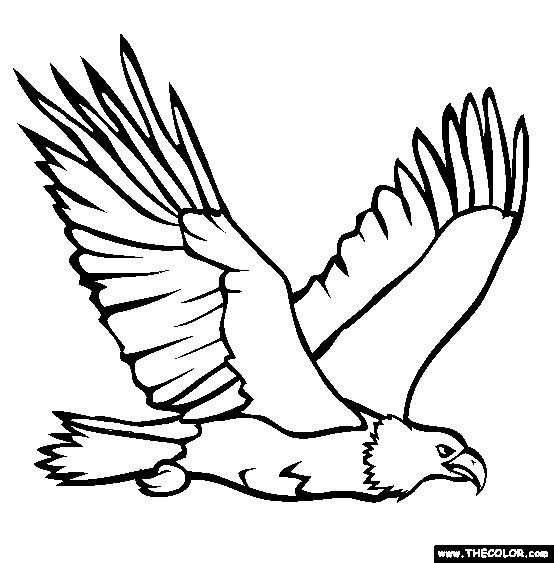 Coloriage un aigle royal au chasse dessin gratuit imprimer - Dessin de aigle ...