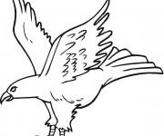Coloriage et dessins gratuit Un beau Aigle en vol à imprimer