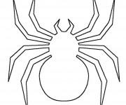 Coloriage Araignée à compléter