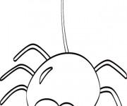 Coloriage Araignée amusante