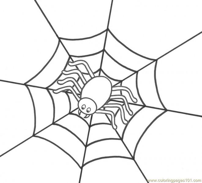 Coloriage et dessins gratuits Araignée attend sa victime à imprimer