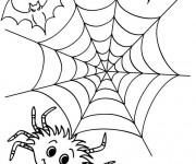 Coloriage Araignée de Halloween