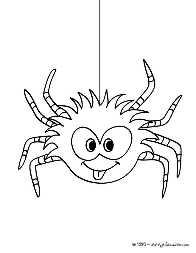 Coloriage araign e dr le dessin gratuit imprimer - Coloriage drole a imprimer ...