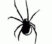 Coloriage Araignée en noir en ligne