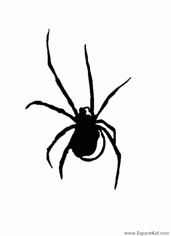 Coloriage et dessins gratuits Araignée en noir en ligne à imprimer