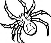 Coloriage et dessins gratuit Araignée en noir et blanc à imprimer
