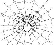 Coloriage Araignée en noir et  La Toile