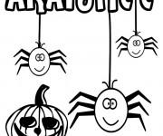 Coloriage Araignée et Cirtouille de Halloween