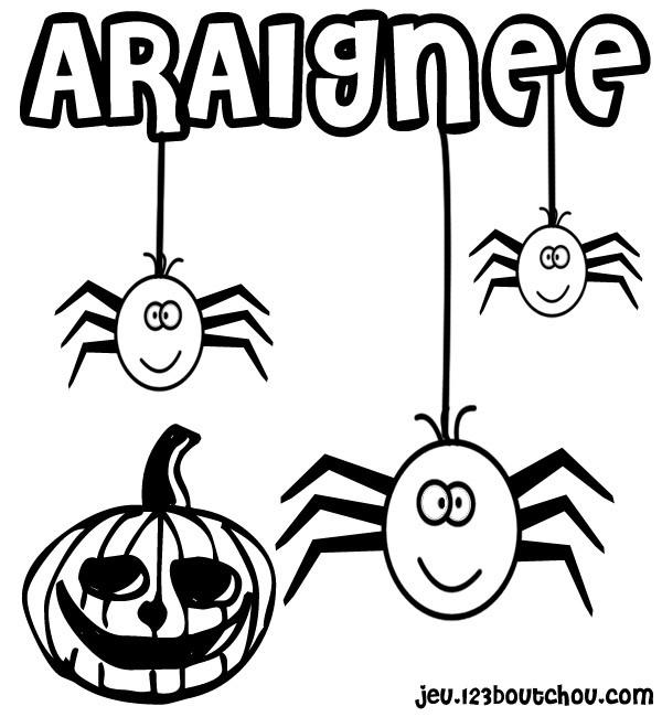 Coloriage et dessins gratuits Araignée et Cirtouille de Halloween à imprimer