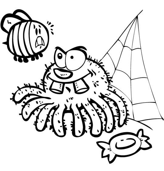 Coloriage et dessins gratuits Araignée et Mouche à imprimer